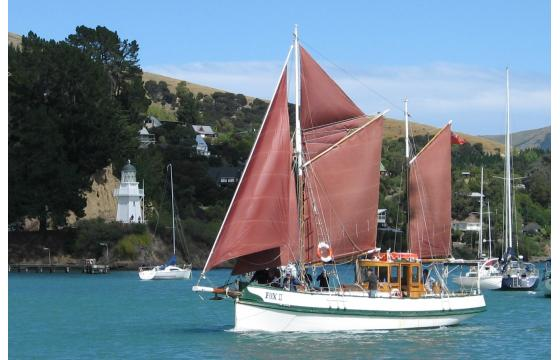 Fox 2 in Akaroa